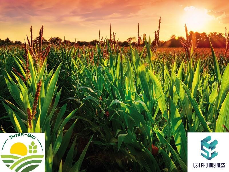 INTER- BIO, membru IFOAM EU salută decizia de a pune produsele ecologice în centrul sistemului european de alimentație